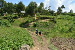 The Water Project: Shianda Community, Akhonya Spring -  People Carrying Water