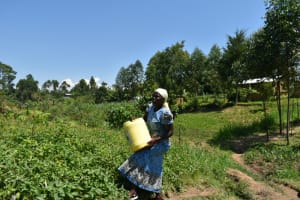 The Water Project: Shianda Community, Akhonya Spring -  Mounting Water On Her Head