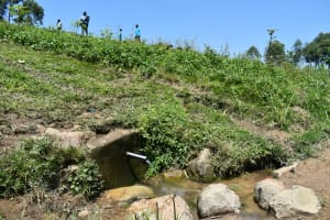 The Water Project: Shianda Community, Akhonya Spring -  Sloping Landscape Around Spring