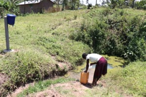 The Water Project: Elwichi Community, Mulunda Spring -  Mildred Fetching Water