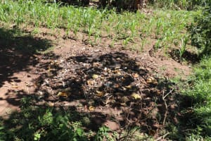 The Water Project: Kalenda A Community, Moro Spring -  Garbage Disposal Point