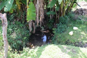 The Water Project: Kalenda A Community, Moro Spring -  Unprotected Spring