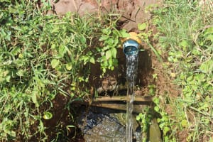 The Water Project: Lukala West Community, Luka Spring -  Makeshift Discharge Pipe