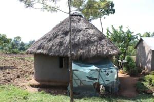 The Water Project: Litinye Community, Vuyanzi Spring -  At Home