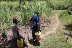 The Water Project: Luyeshe Community, Khausi Spring -  Leaving The Spring