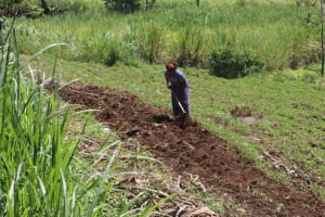 The Water Project: Kalenda A Community, Sanya Spring -  A Woman Working On Her Farm