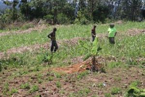 The Water Project: Kalenda A Community, Sanya Spring -  At The Farms Tilling