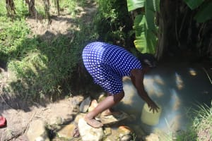 The Water Project: Kalenda A Community, Sanya Spring -  Fetching Water From The Spring