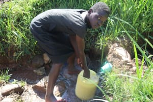 The Water Project: Lukala West Community, Angatia Spring -  Fetching Water From The Spring