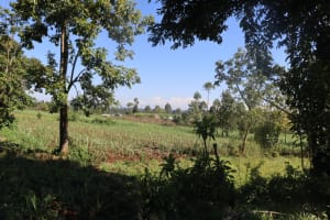 The Water Project: Lukala West Community, Angatia Spring -  General Landscape