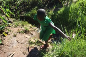The Water Project: Lukala West Community, Angatia Spring -  Leaving The Water Point