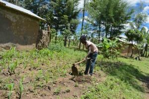 The Water Project: Shikokhwe Community, Mulika Spring -  Farming
