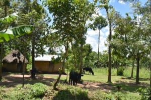 The Water Project: Shikokhwe Community, Mulika Spring -  Household Layout