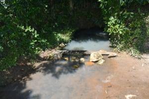 The Water Project: Shikokhwe Community, Mulika Spring -  Water Source