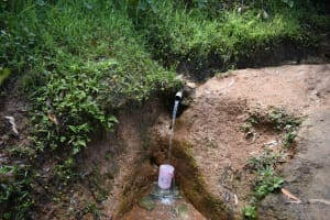 The Water Project: Malekha West Community, Soita Spring -  Water Drawing Point