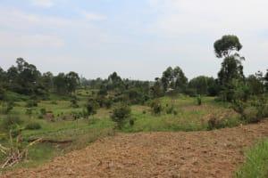 The Water Project: Bukhaywa Community, Violet Inganji Spring -  Community Lands