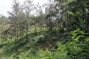 The Water Project: Bukhaywa Community, Violet Inganji Spring -  Landscape Of Community