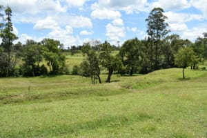 The Water Project: Luyeshe North Community, Reuben Endeche Spring -  Landscape
