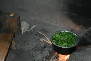 The Water Project: Luyeshe North Community, Reuben Endeche Spring -  Vegetables Cooking