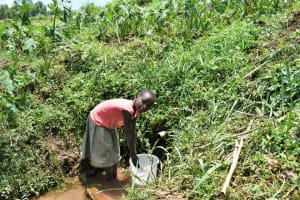 The Water Project: Shihome Community, Oloo Njinuli Spring -  Faith Fetching Water