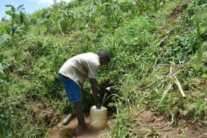The Water Project: Shihome Community, Oloo Njinuli Spring -  Fetching Water