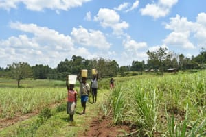 The Water Project: Shihome Community, Oloo Njinuli Spring -  Heading Home With Water