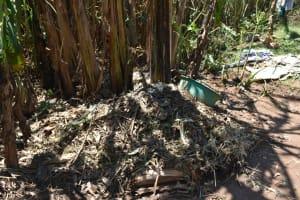 The Water Project: Shianda Community, Govet Lumbasi Spring -  A Dumpsite
