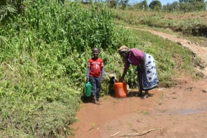 The Water Project: Shianda Community, Govet Lumbasi Spring -  Fetching Water From The Spring