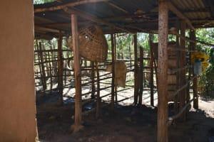 The Water Project: Shianda Community, Govet Lumbasi Spring -  The Animal Enclosure