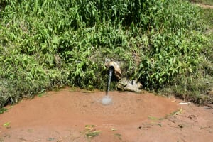 The Water Project: Shianda Community, Govet Lumbasi Spring -  The Water Point