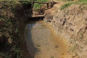 The Water Project: Makhwabuyu Community, Shirandula Spring -  Unprotected Spring