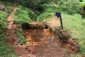 The Water Project: Shamakhokho Community, Wizula Spring -  Spring Site Landscape