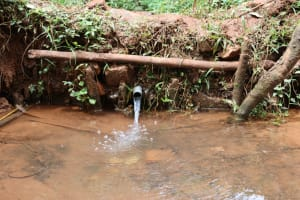 The Water Project: Shamakhokho Community, Wizula Spring -  Unprotected Water Source