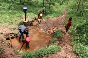 The Water Project: Shamakhokho Community, Wizula Spring -  Fetching Water