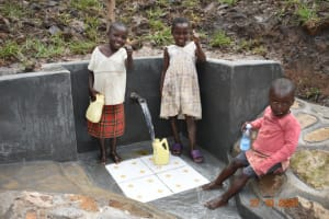 The Water Project: Mahola Community, Oyula Spring -  All Ages Can Now Safely Access The Spring