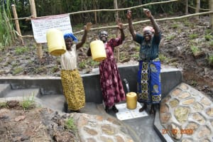 The Water Project: Mahola Community, Oyula Spring -  Water Celebrations