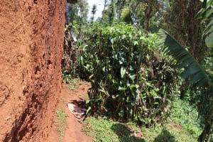 The Water Project: Shikoye Community, Kwa Witinga Spring -  Bathing Shelter