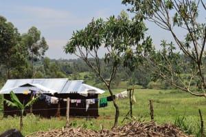 The Water Project: Shikoye Community, Kwa Witinga Spring -  Homestead