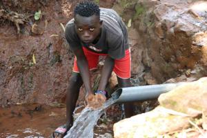 The Water Project: Shikoye Community, Kwa Witinga Spring -  Nelson Machanyi
