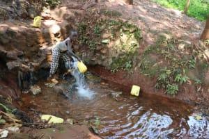 The Water Project: Shikoye Community, Kwa Witinga Spring -  Collecting Water