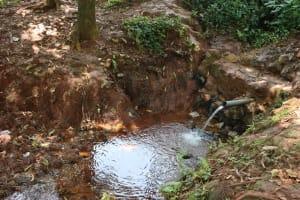 The Water Project: Shikoye Community, Kwa Witinga Spring -  Unprotected Spring