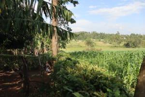 The Water Project: Shisasari Itumbu Community, Mathias Juma Spring -  Community Landscape