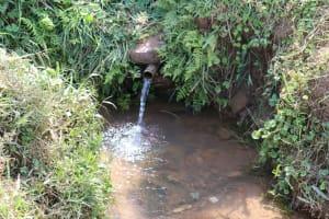 The Water Project: Shisasari Itumbu Community, Mathias Juma Spring -  Water Source