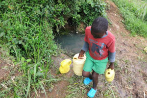 The Water Project: Malimali Community, Onyango Spring -  Carrying Water