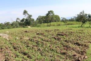 The Water Project: Malimali Community, Onyango Spring -  Community Landscape