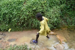 The Water Project: Mundoli Community, Pamela Atieno Spring -  Stepping In The Open Spring