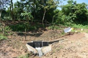 The Water Project: Maraba Community, Nambwaya Spring -  Protected Nambwaya Spring
