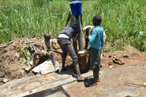 The Water Project: Shitavita Community, Patrick Burudi Spring -  Reinstalling Chlorine Dispenser