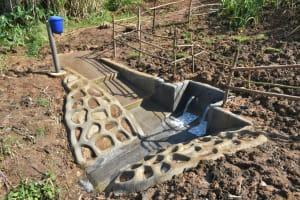 The Water Project: Shitavita Community, Patrick Burudi Spring -  Protected Spring