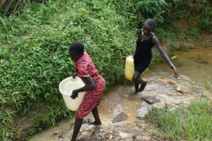 The Water Project: Mundoli Community, Pamela Atieno Spring -  Leaving The Spring
